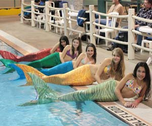 Functional Mermaid Tails