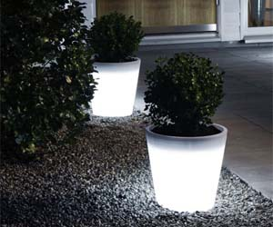 Light Up Planters